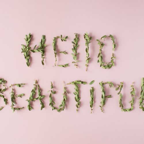 words hello beautiful made with green branches on pink background. flat lay, top view